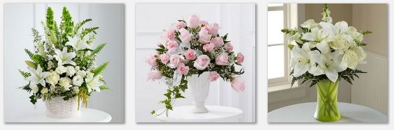 Su florista fina de confnza.