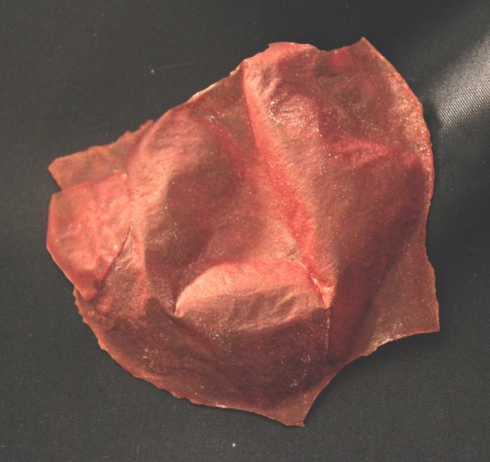 It's A Tomato Chip