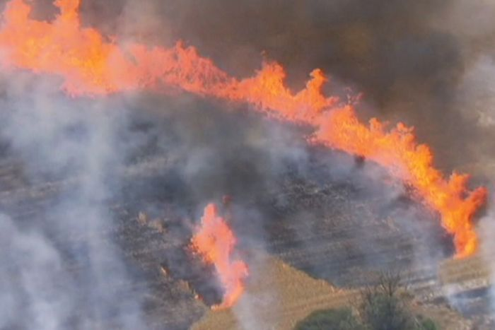 PHOTO: There has not been a major bushfire which has claimed lives in WA in the past couple of years. (ABC News)