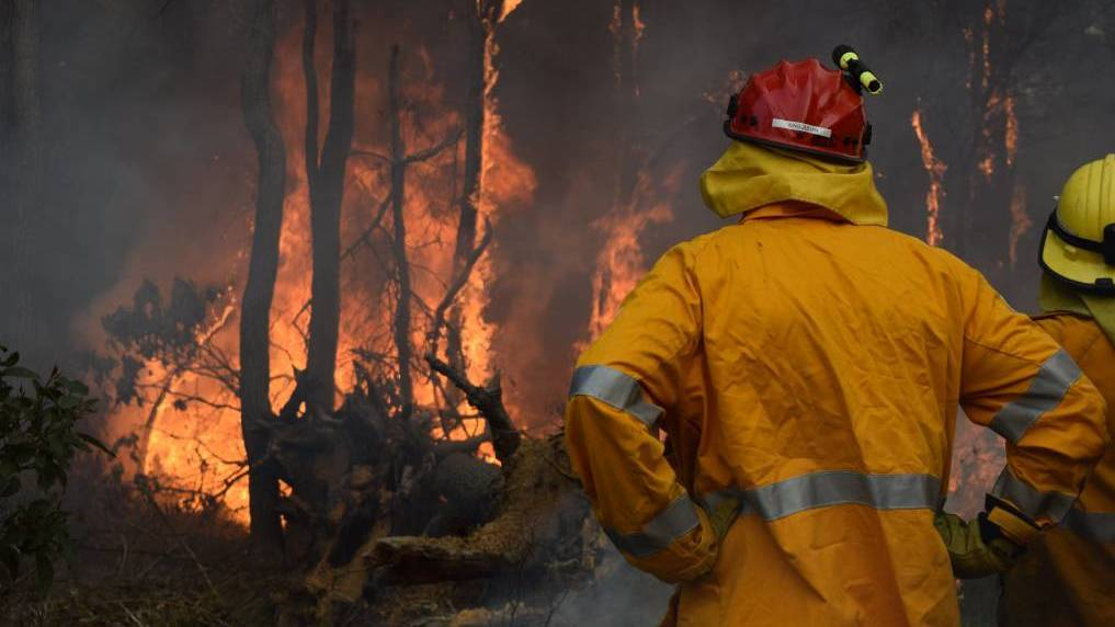 The state government is offering $2 million for bushfire mitigation. (Photo: Collie Mail)