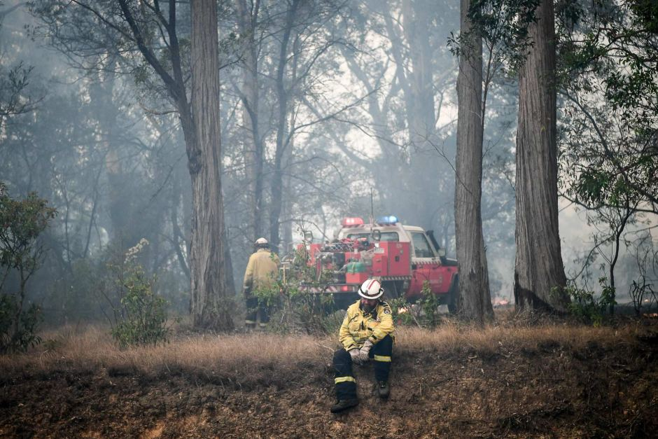 PHOTO: Exhausted firefighters have been battling dozens of blazes across NSW amid a heatwave. (ABC News: Brendan Esposito)