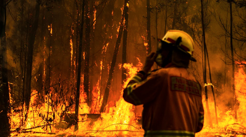 A rural fire service firefighter attempts to protect a property during the Currowan fire in NSW. CREDIT:DION GEORGOPOULOS