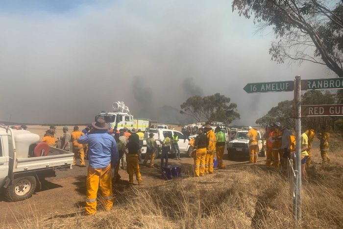 PHOTO: The fire drew a massive response from hundreds of volunteer firefighters from across the state. (Borden Volunteer Bushfire Brigade)