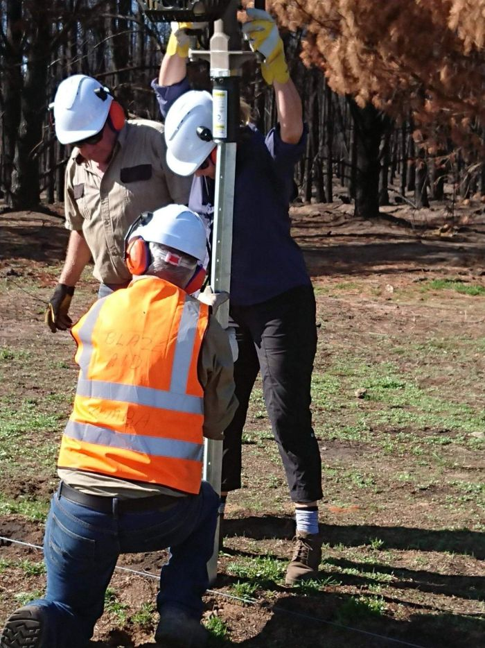 The team in Tumbarumba would like at least another 100 volunteers. (Supplied)