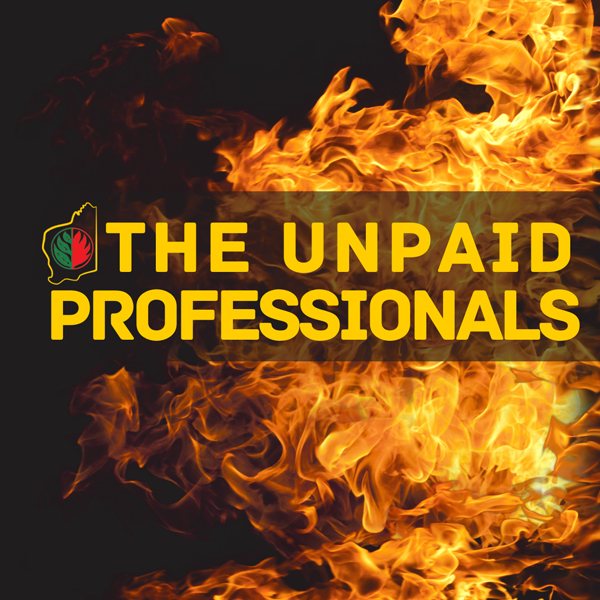 Background: Who are the Unpaid Professionals?
