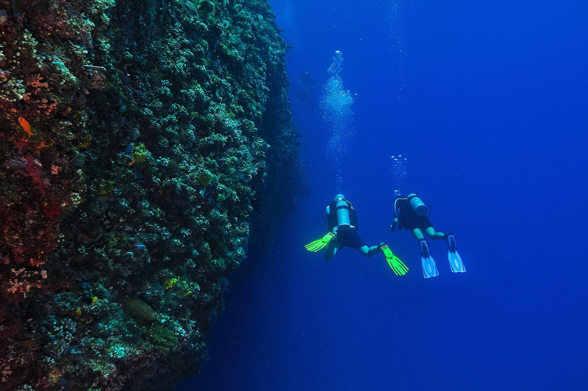 Embudu-Village-Divers
