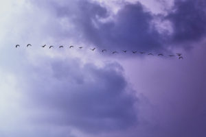 The devil is in the data: Mitigating cloud migration risks