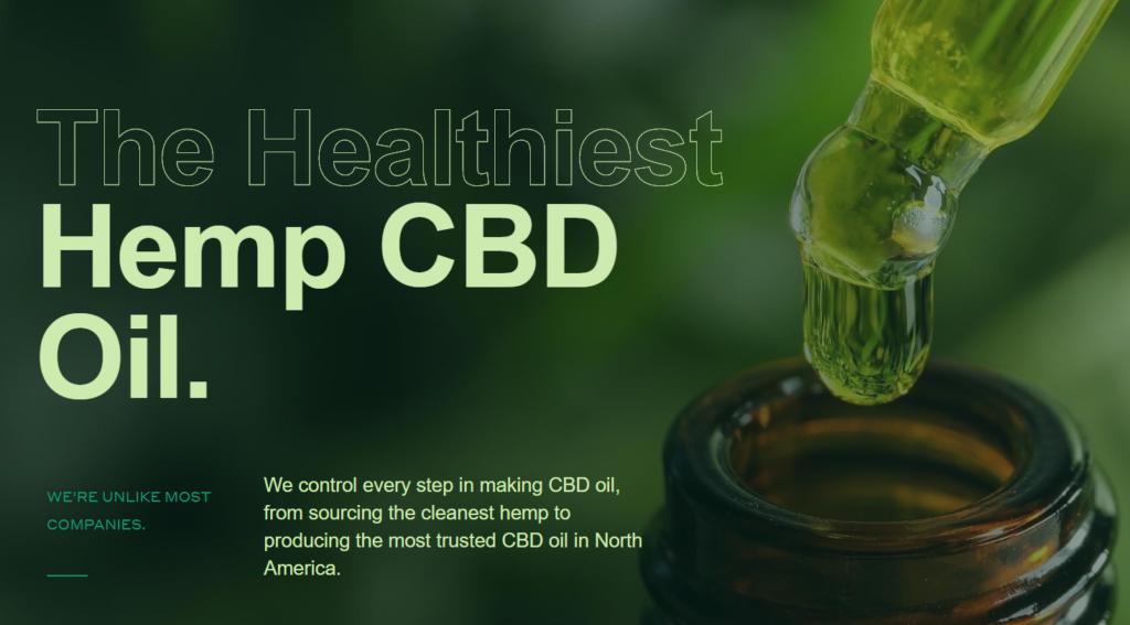 marijuana stock review, centuria foods