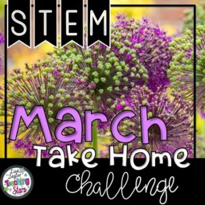 STEM March Take Home Challenge