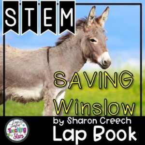 STEM Saving Winslow Connection