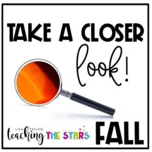 Fall Picture Observations | Remote Learning | Google Slides