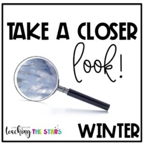 Winter Picture Observations | Remote Learning | Google Slides