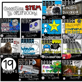 STEM Novel Connections Activities
