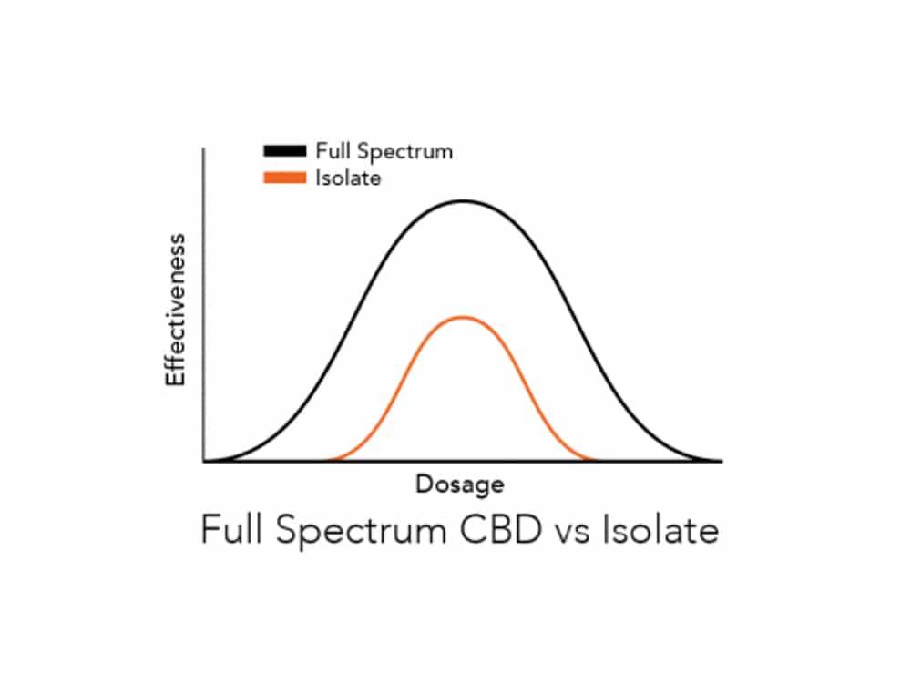 Full Spectrum CBD vs Isolate