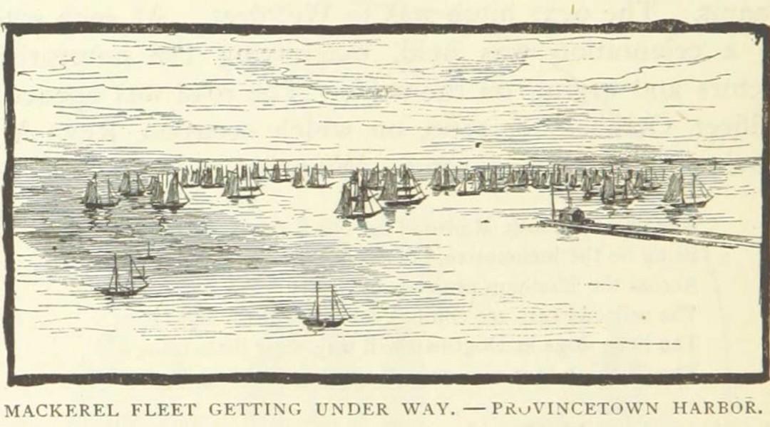 Provincetown History Snippet: The Mackerel Fleet