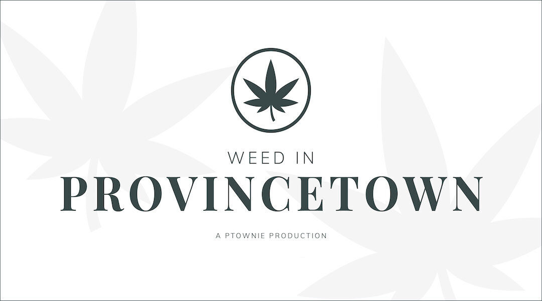 """The """"Weed in Provincetown"""" Update"""