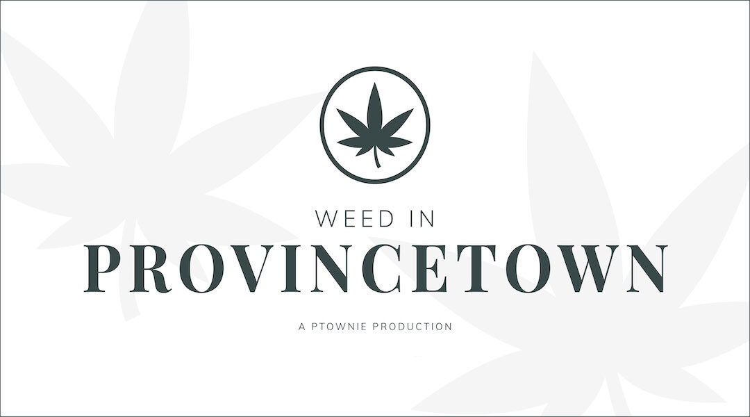 Weed in Provincetown