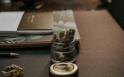 Dozens interested in marijuana shop jobs in Provincetown