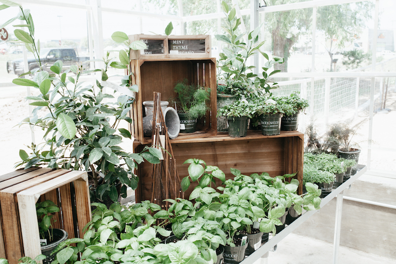 Brookwood Greenhouse