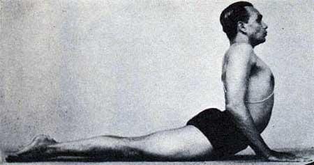 Bhujangasana, posture de yoga