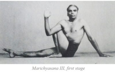 Light on Marichyasana C