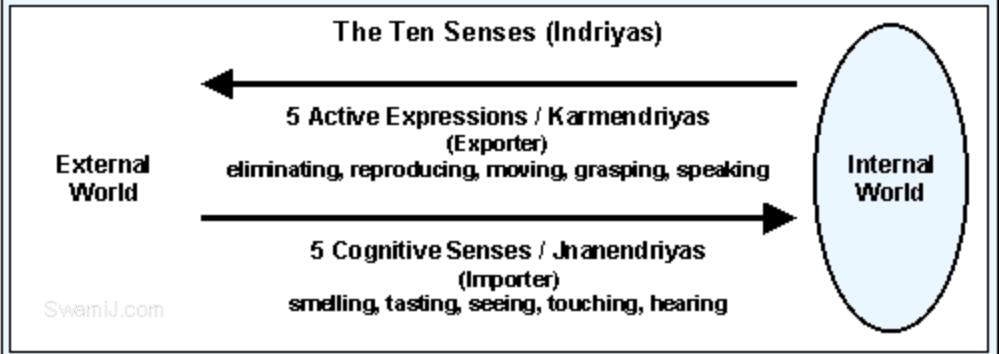 Les 10 sens dans la méditation