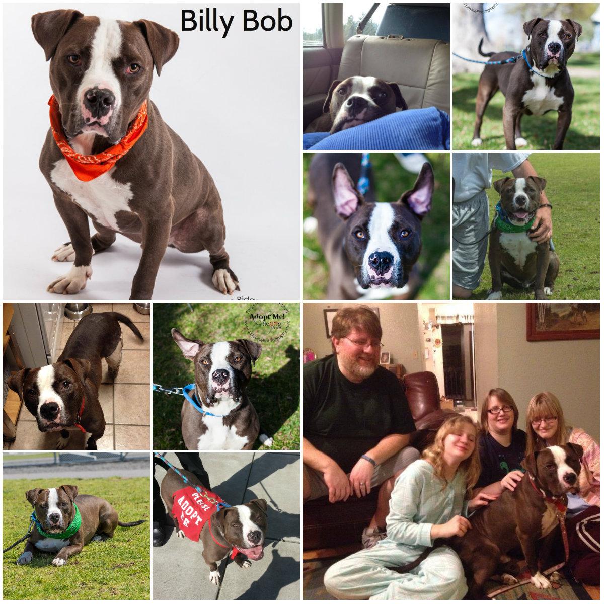 Billy Bob