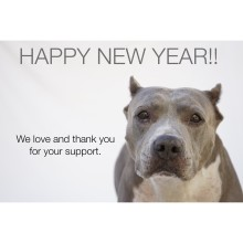 HAPPY NEW YEAR SUFP SUPPORTERS!