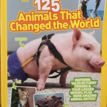 """ANGEL BECOMES NATIONAL GEOGRAPHIC """"125 Animals That Changed the World"""""""