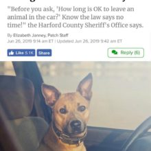 LAW FOR PETS IN HOT CARS CHANGES IN HARFORD MD!