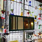 city farming experiment