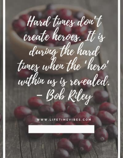 bob riley quotes