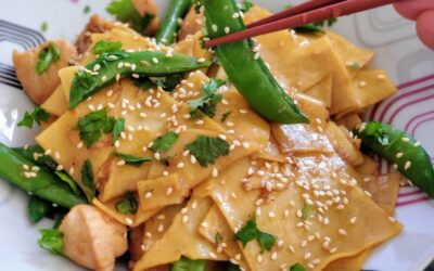 Chicken Wonton Stir-Fry paired with Pinot Noir