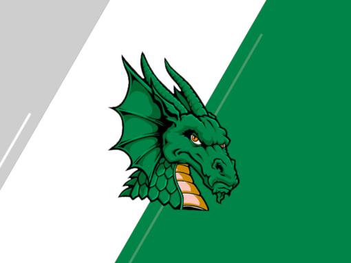 South Oldham Dragons