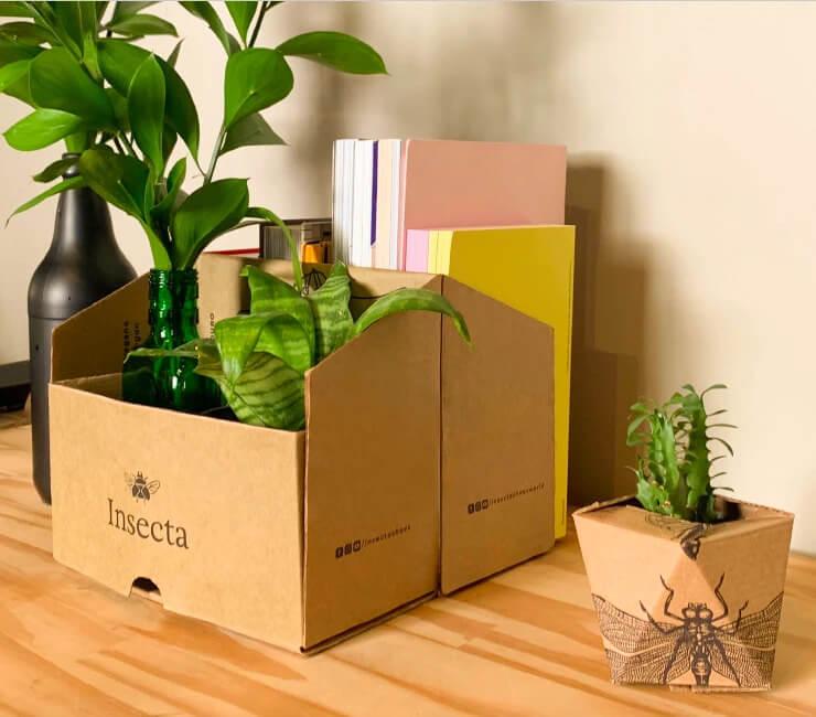 Embalagem para calçados da Insect Shoes completamente reciclável e reutilizável.