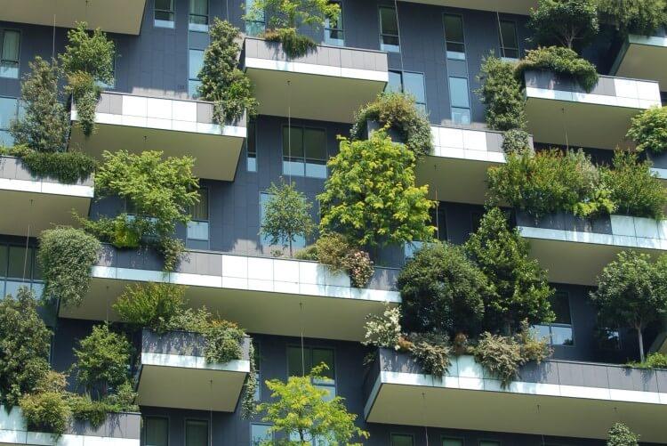 Fachada de um prédio com plantas em abundância.