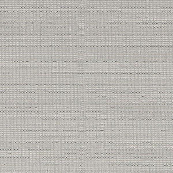 Axis Silver 1009360