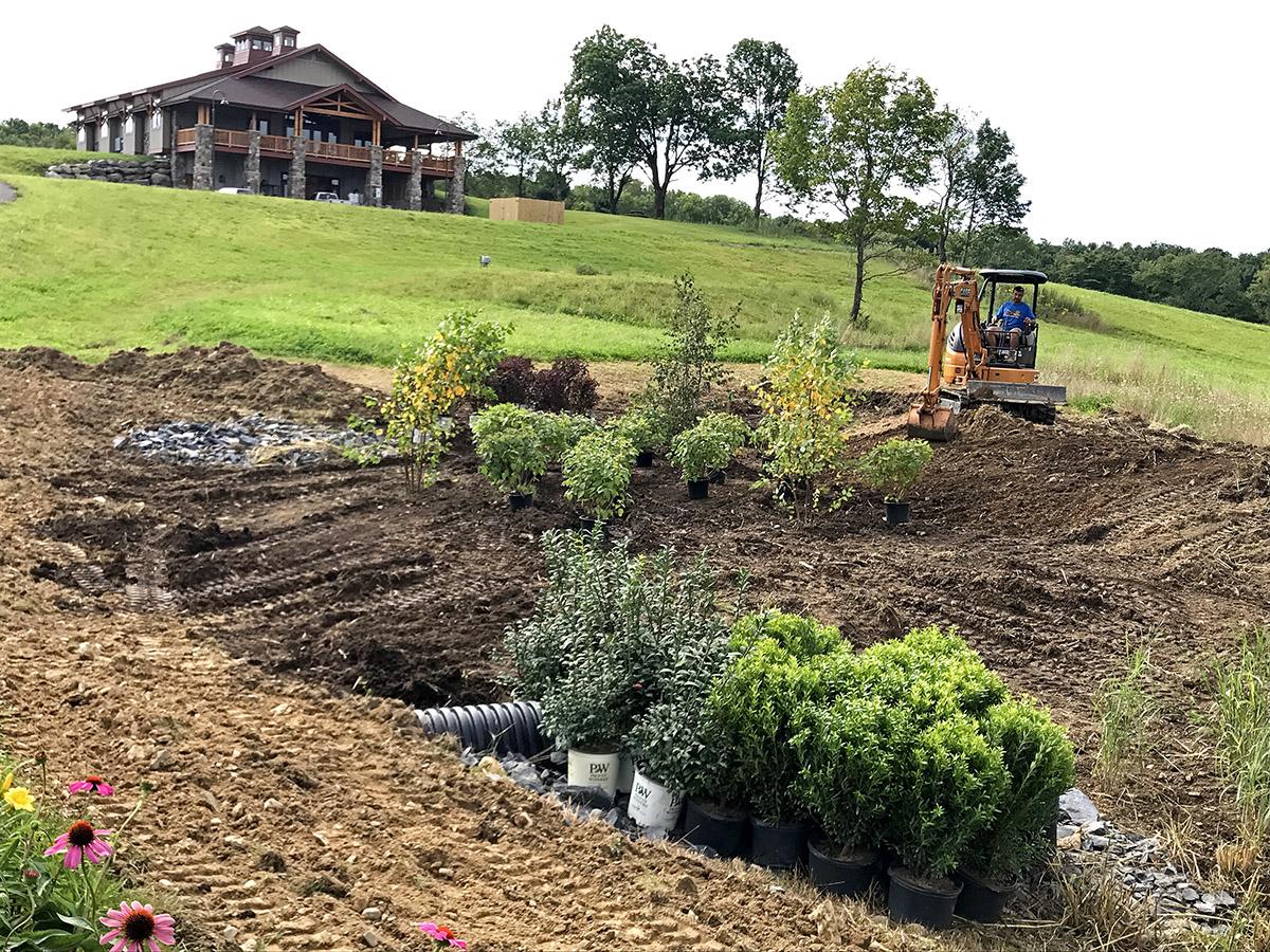 Winery Rain Garden Planting