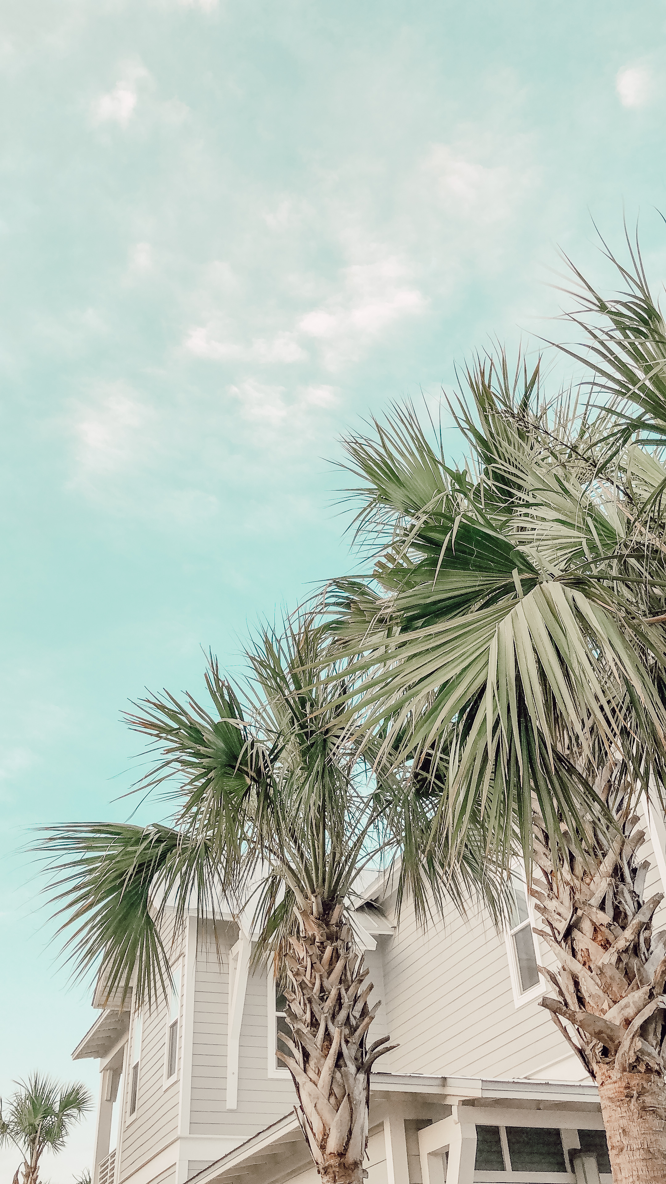 30A Travel Guide 2018
