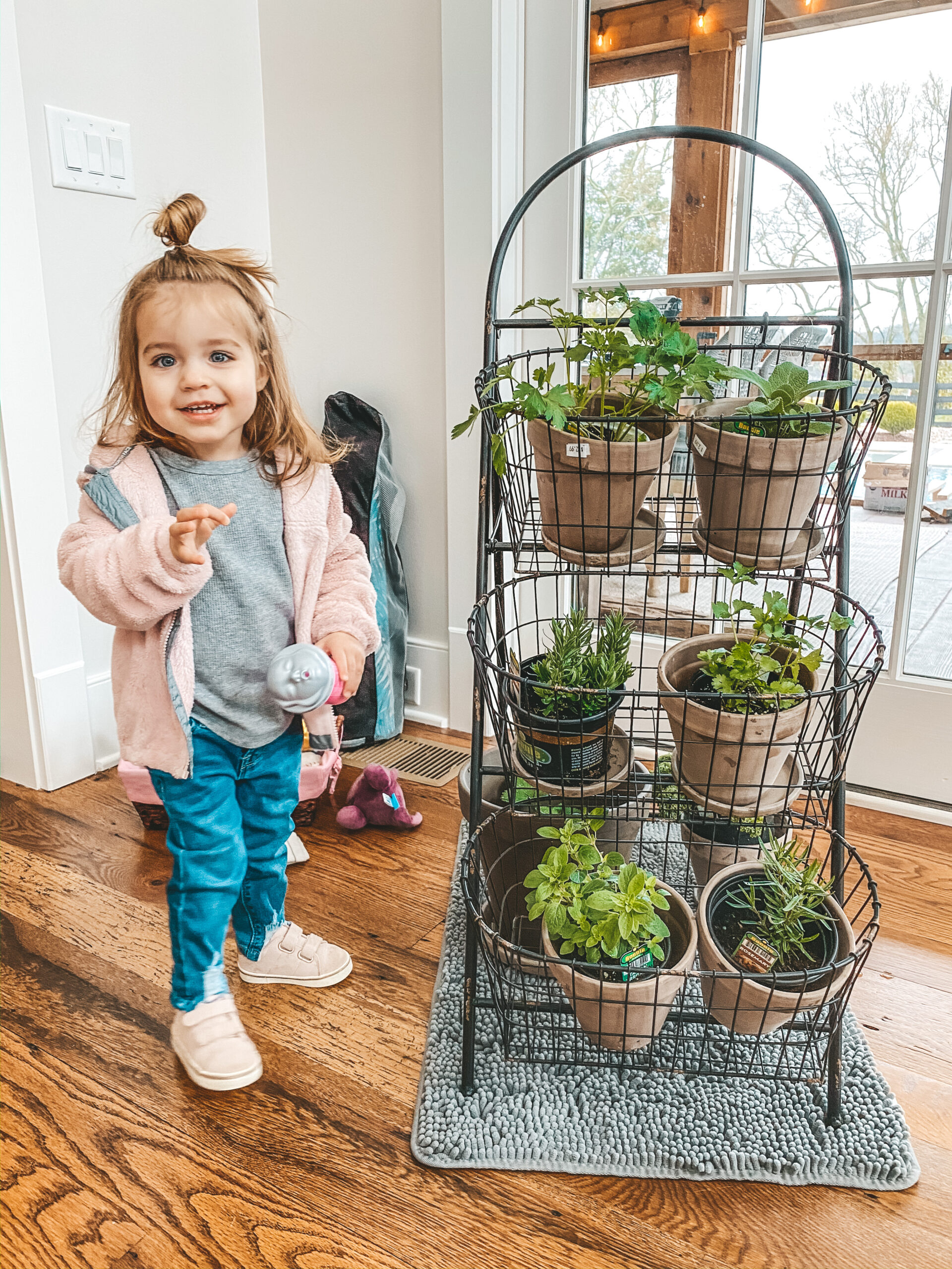 Home with Ang: How to Grow Your Own Herbs at Home