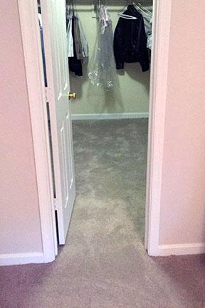 residential-carpet
