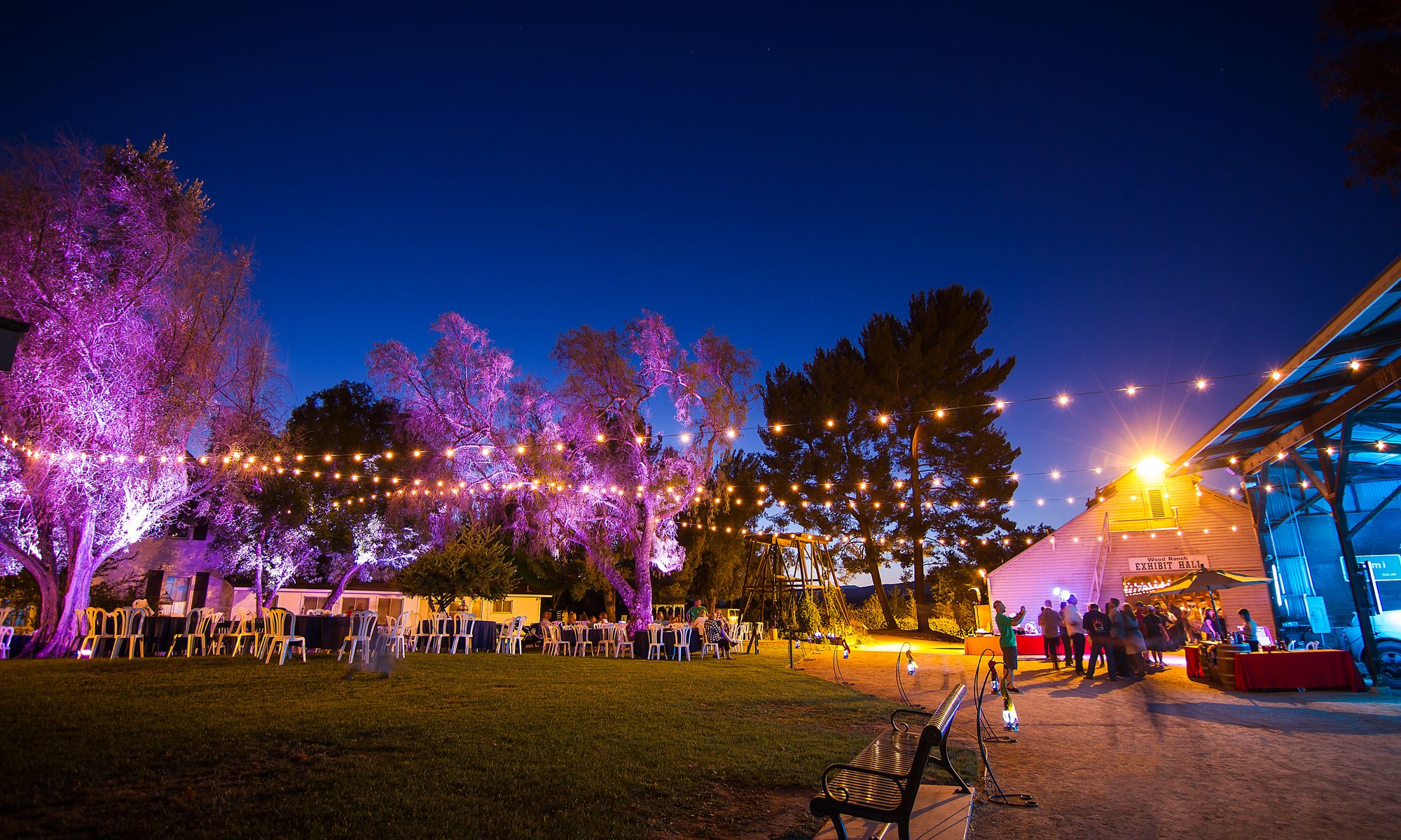 Special Event Lighting - BumbleBee Foundation