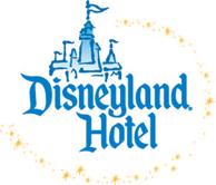 Special Event Lighting - Disney Hotel