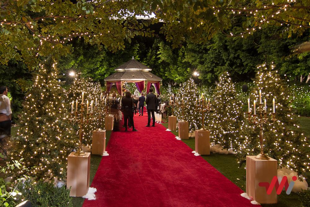 Special Event Lighting - Wedding