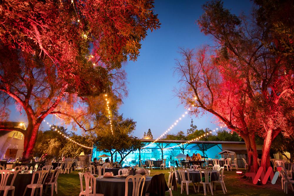 Special Event Lighting - Fundraiser