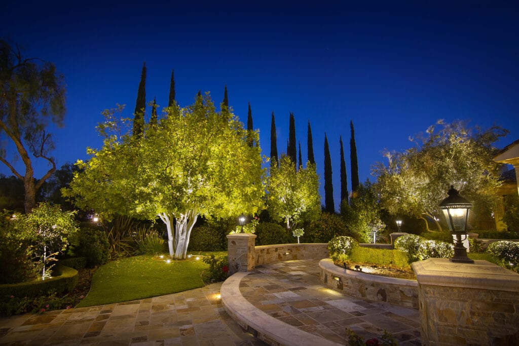 Tree and Pathway Landscape Lighting