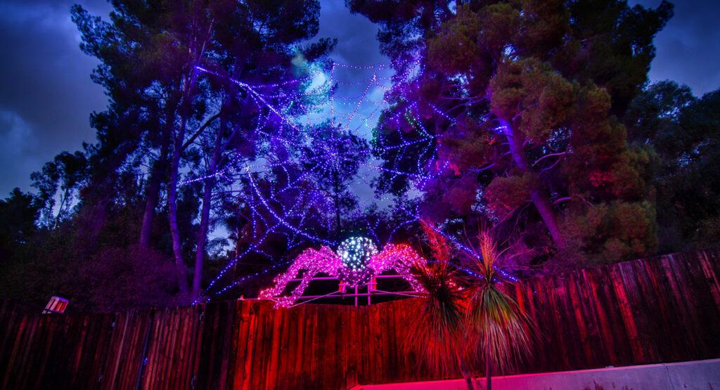 LA Zoo Lights Spider
