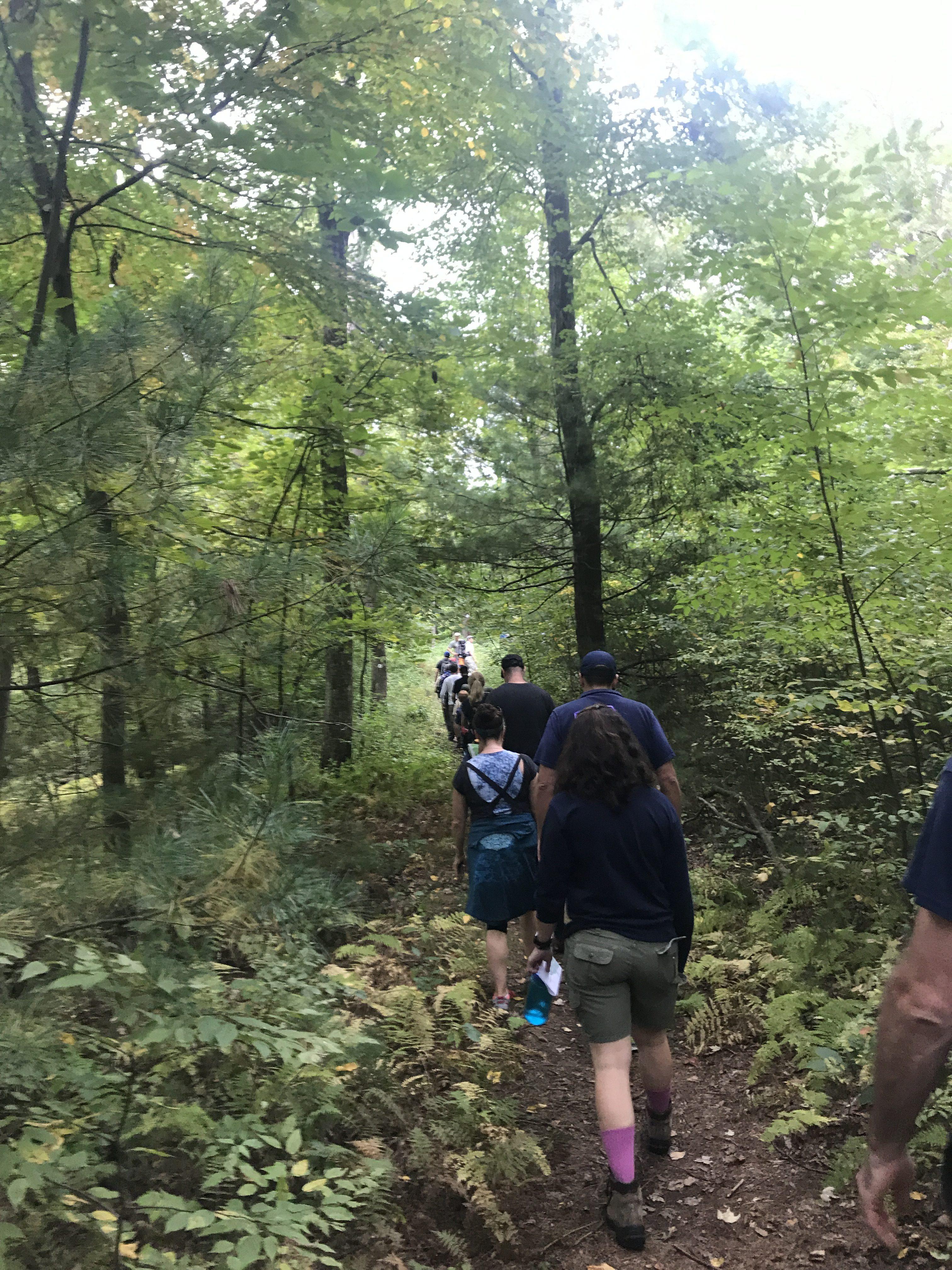 Pack 310 Hike – Pegan Hill