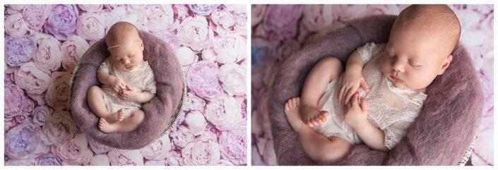 chester county newborn photos
