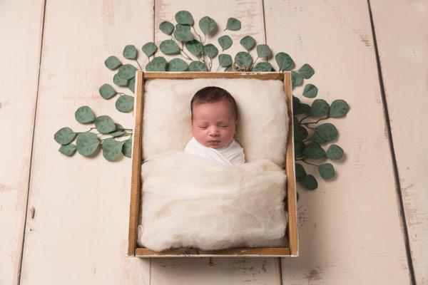 baby portraits near me